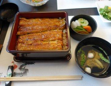 【食べログ3.8・のだや】鶯谷・入谷駅おすすめランチ&ディナー「のだや」で極上うなぎ&うな重を。