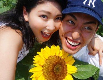 夏の風物詩♡ひまわり畑とオランダの風車がある佐倉ふるさと広場へドライブデート♪