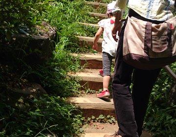 山の日に23区内最高峰の山、箱根山でお手軽登山をお楽しみ