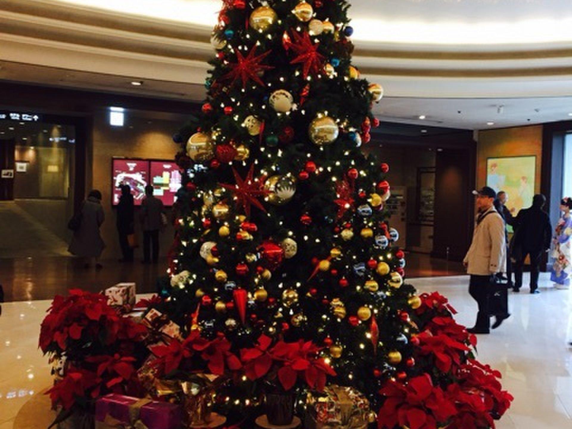 椿山荘で過ごすクリスマス♡ 大人なティータイムを過ごそう♪運が良ければ紅葉も!