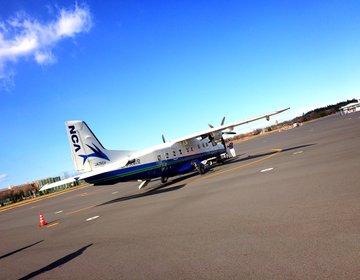 【プロペラ機で25分間の空の旅!】調布飛行場から自然豊かな伊豆大島に行こう!