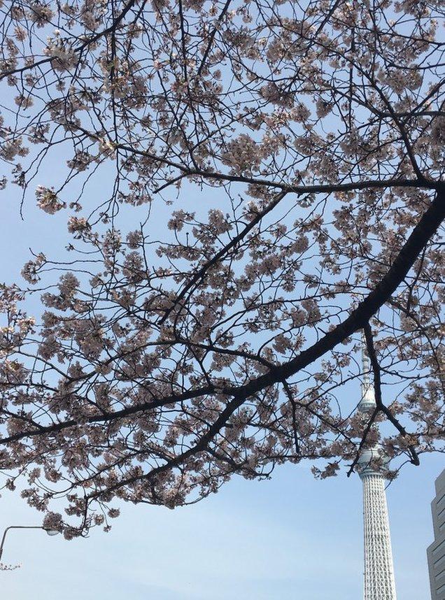 花川戸公園