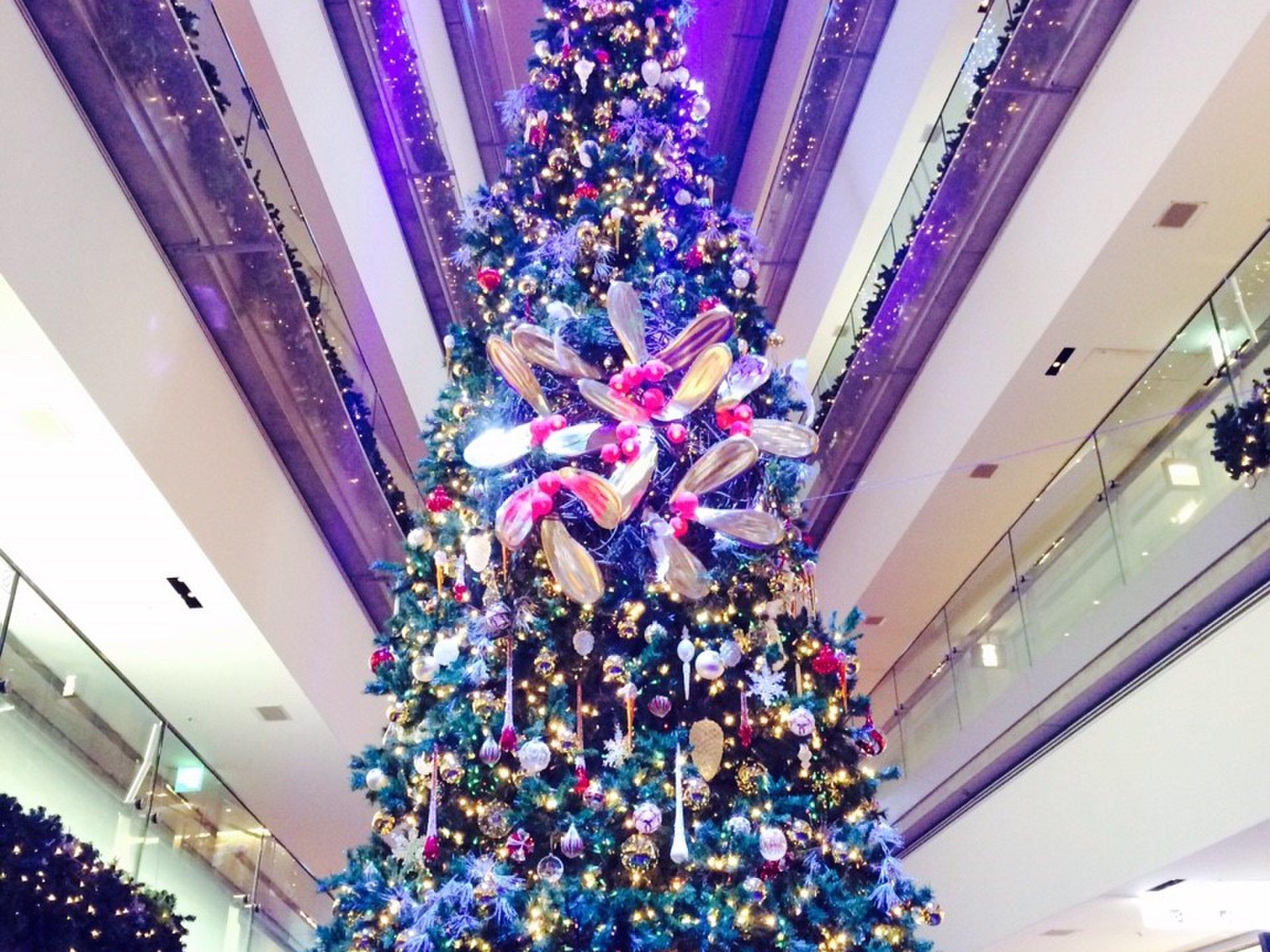 【クリスマスに行きたい記念日デート♪】定番イルミネーションからのおしゃれカフェで過ごす1日!