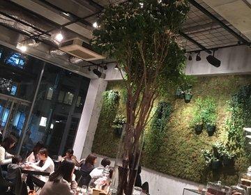こんなカフェ行ってみた☆~インスタ映え間違いなし!!次の女子会で行きたいカフェ♡~