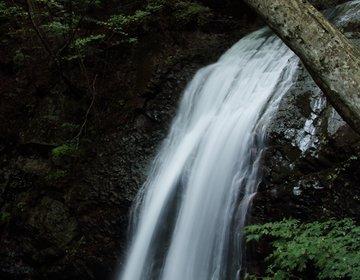 【滝マニア必見】滝!滝!滝!秋の日光/鬼怒川/那須滝へおでかけ ~紅葉もあるよ!~