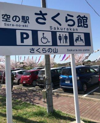 成田市さくらの山公園