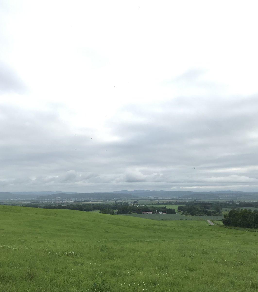 とよころの丘