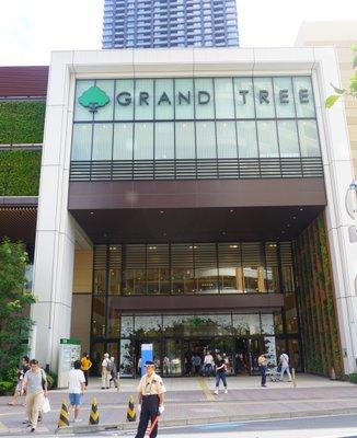 グランツリー 武蔵小杉