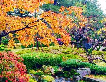 【金沢×日帰り】紅葉、グルメ、アートも!お腹も心も満たされちゃう贅沢旅♪