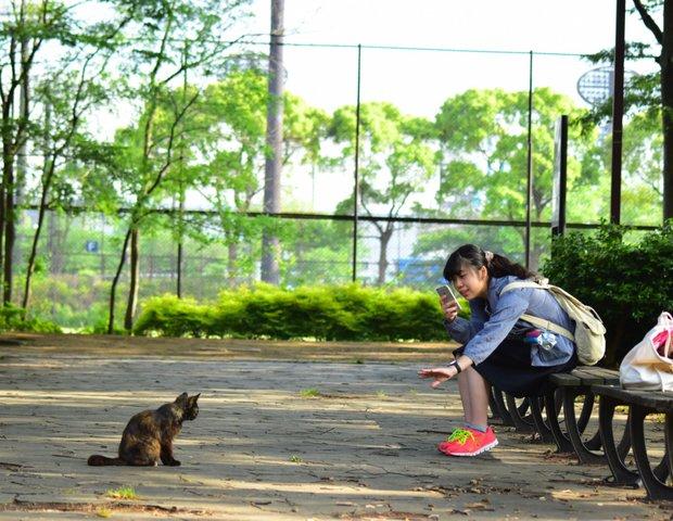 大井ふ頭中央海浜公園スポーツの森