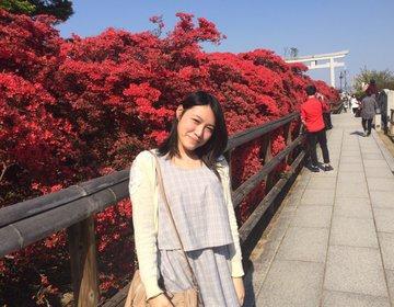 【春の京都観光穴場スポット】真っ赤なツツジが咲く長岡天満宮が綺麗すぎる!