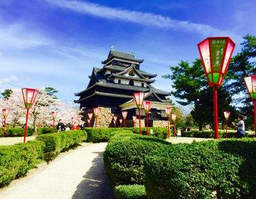 【山陰ほんものの城下町】春の松江城の桜とその周辺を探検!船祭、宍道湖、染め物等贅沢な松江観光
